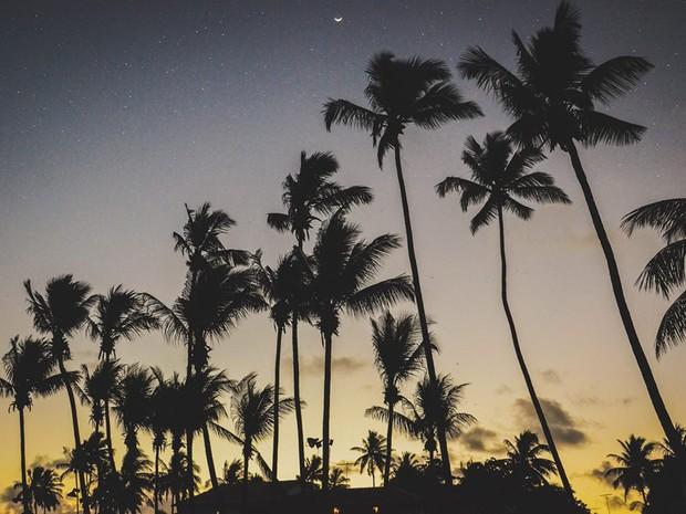 Apesar da beleza e tranquilidade da praia, o Pontal do Maracaípe guarda sua maior atração para o final do dia (Foto: Danilo Luiz / Prefeitura de Ipojuca)