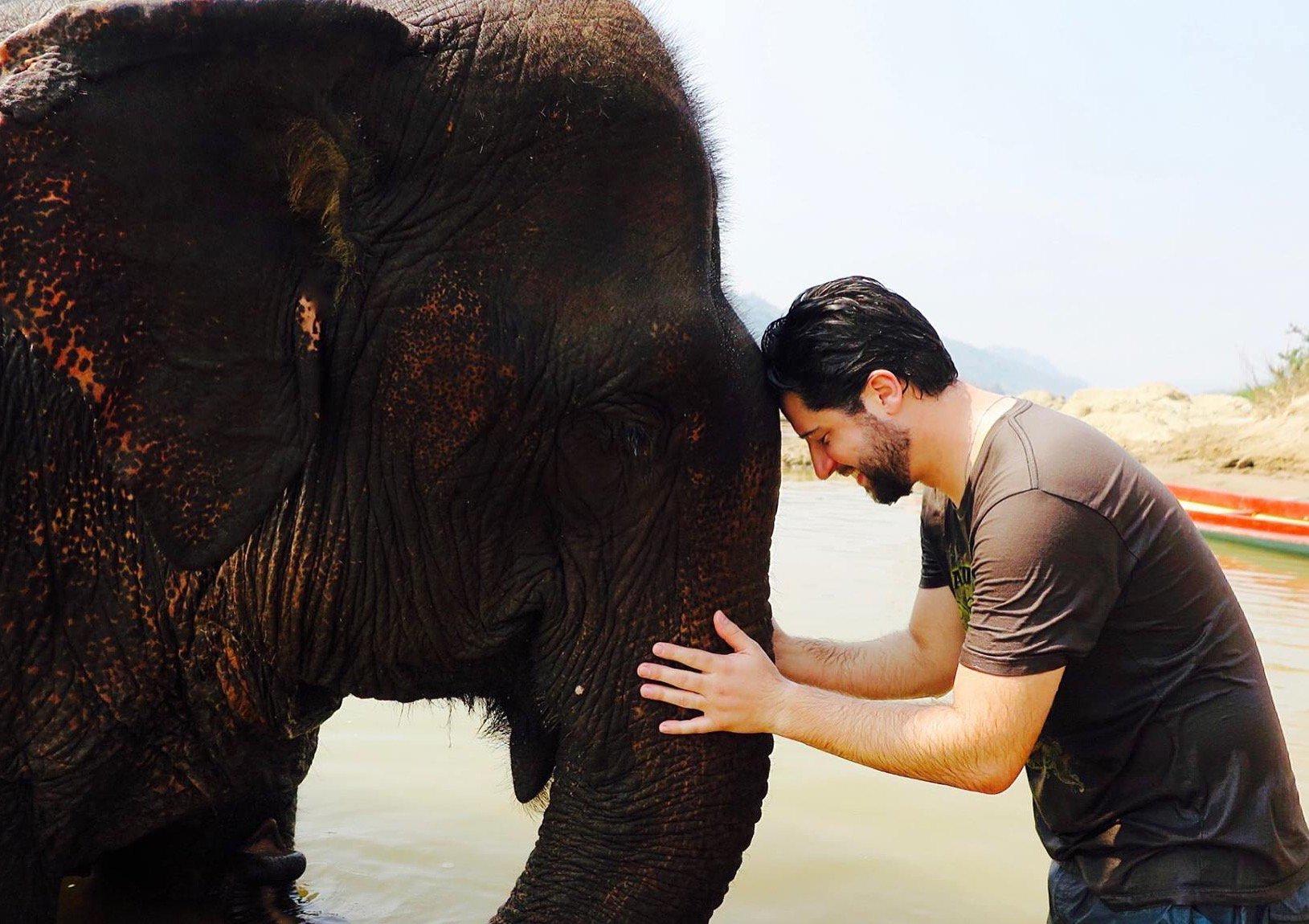 LuangPrabang_Laos_Elefantes