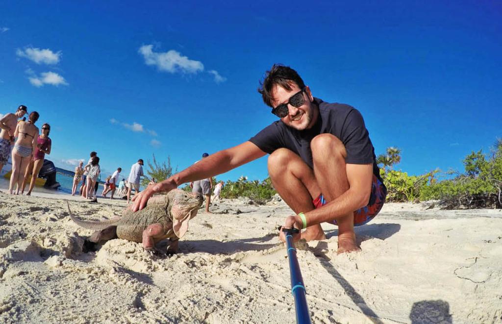 Simpticas iguanas da Iguana Island - Exuma - Bahamas