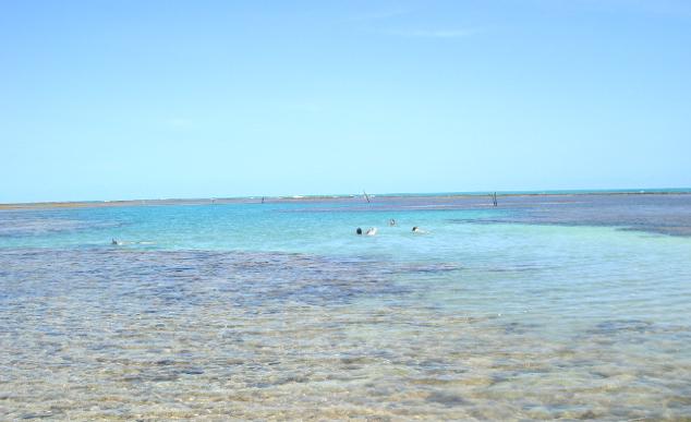 As piscinas naturais de So Miguel dos Milagres, em Alagoas | Tina Magalhes