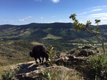 Vista do Alto do Cruzeiro (Foto: Gabriela Mendes)