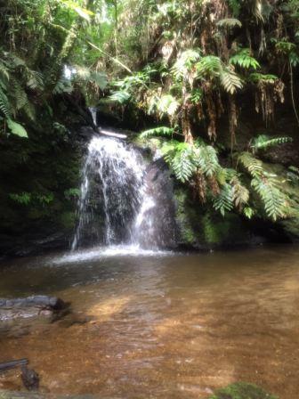 Cachoeira do Bosque dos Beija-Flores (Foto: Gabriela Mendes)