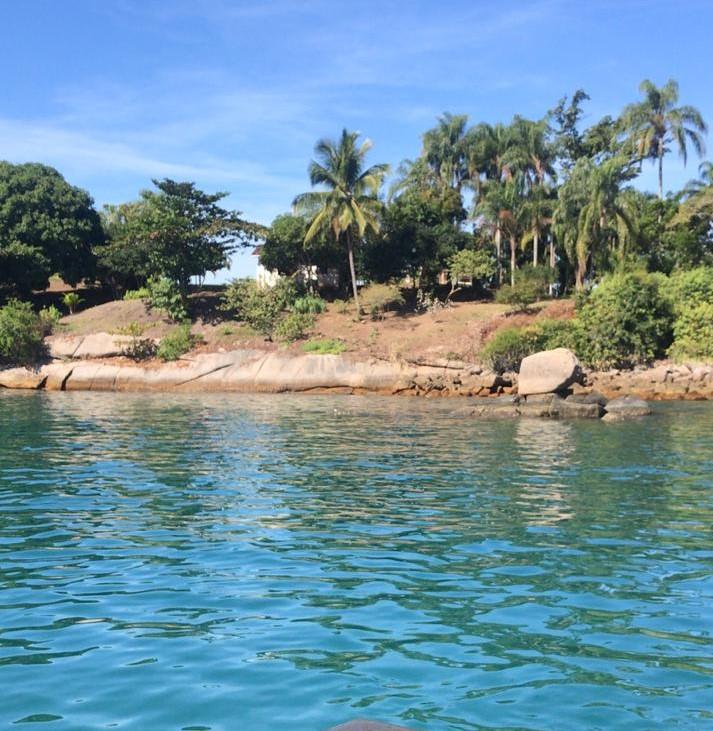 coqueiros e palmeiras enfeitam a vista da ilha comprida