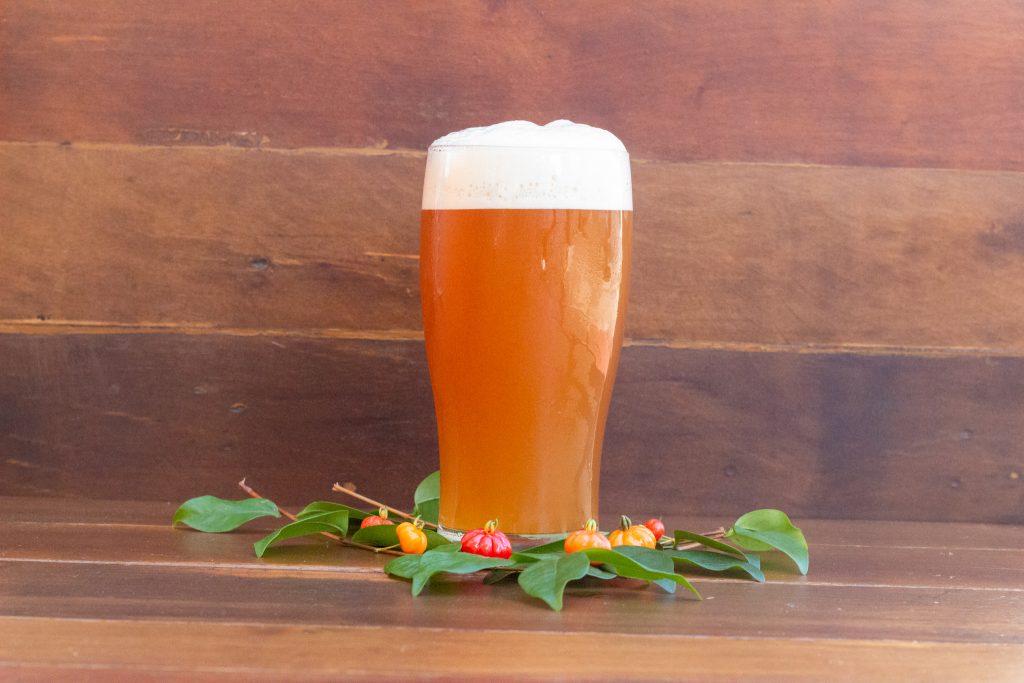 Cerveja Luís de Gois
