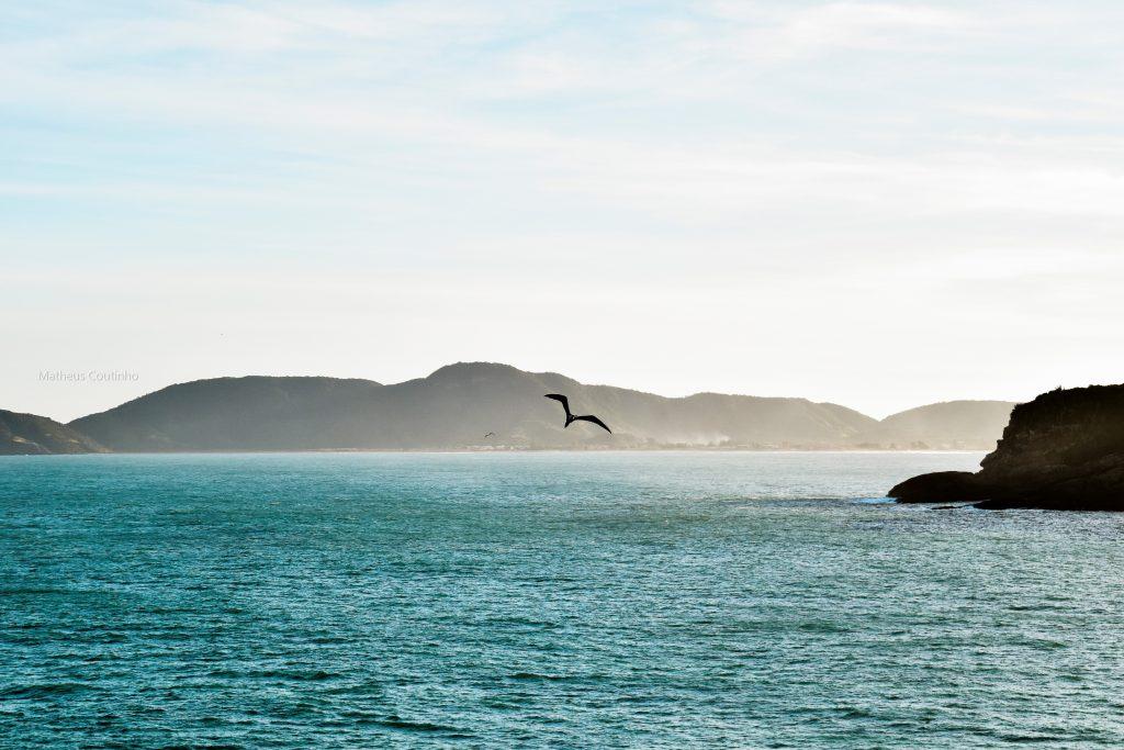 Búzios no Top 5 de destinos mais promissores para 2021: saiba as novidades